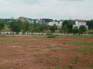 Đất ngay chợ An Bình 210 m2 75tr/nền