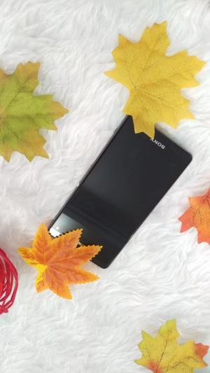 Xperia Z1mini ( Z1f .D5503 ) like new đầy đủ phụ kiện