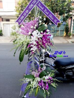 Điện hoa Thanh Hóa cung cấp dịch vụ về quà tặng và chuyển phát hoa tươi chúc mừng khai trương, hoa sinh nhật, hoa chia buồn - Miễn phí giao hàng nội thành Thành phố.