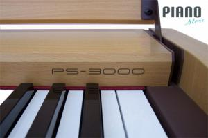 CASIO PS 3000