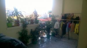 Bán gấp Nhà 4 tầng Tư Đình – Long Biên :...