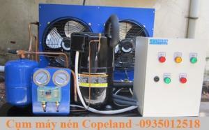 Lắp đặt cụm máy nén Copeland -Nhiet lạnh An Khang .