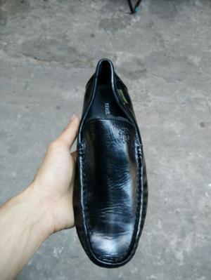 Giày mọi Roberto cavalli