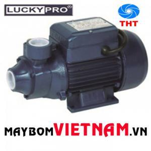 Máy bơm nước gia đình Lucky Pro MKP60-1 0.5HP