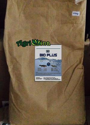 MEN vi sinh đường ruột (BIOPLUS)