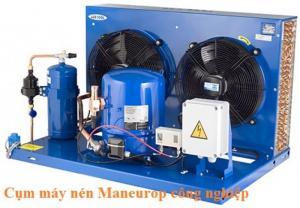 Thông tin chi tiết cụm máy  nén  danfoss maneurop