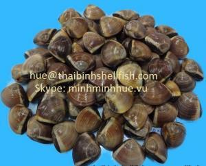 Nghêu nâu nguyên con đông lạnh size 60/80 (pcs/kg), thùng bulk 10 kgs