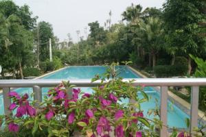 hồ bơi khu nghỉ dưỡng sunset villas
