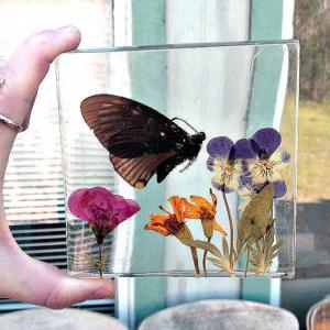 Nhựa Acrylic Resin vẽ tranh cá vàng 3D và làm trang sức handmade