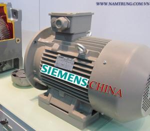 Động cơ điện siemens Trung Quốc