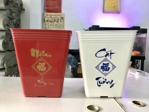 HOT HOT HOT Mẫu mới 2017 - Công ty THAKICO - Chậu Vuông Cao NHƯ Ý CÁT TƯỜNG