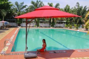 Cho thuê ô dù đỏ che nắng đẹp - LH/ 0949868602