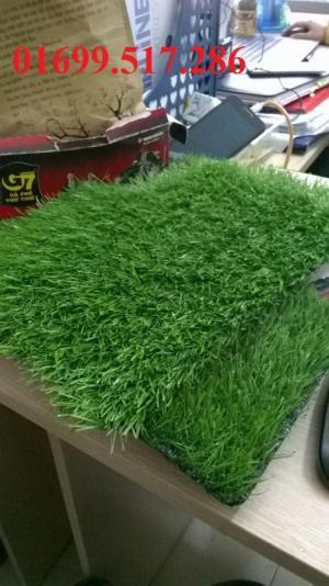 IMG chuyên cung cấp Cỏ nhân tạo sân golf, sân bóng đá.