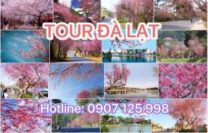 Tour Đà Lạt - Thành Phố Ngàn Hoa 3n3đ- Tết Âm Lịch - Khởi Hành Mùng 3 Tết