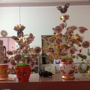 Hoa tài lộc trưng tết