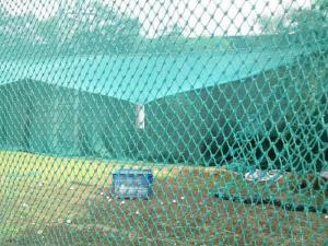Lưới golf màu xanh ngọc, xanh nhạt