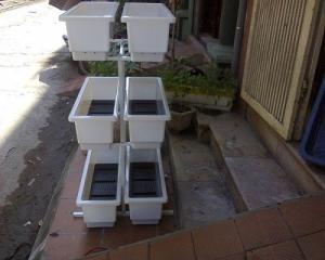 Kệ  trồng rau, trồng hoa 3 tầng 6 chậu ở ban công.