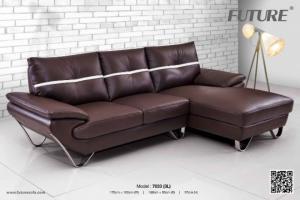 Thanh Dung Furniture chuyên cung cấp các loại sofa da, sofa phòng khách mang vẻ đẹp sang trọng
