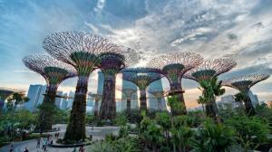 Vé Garden By The Bay Singapore giá rẻ