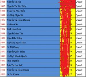 Danh sách khách hàng tiềm năng bds tại tp HCM