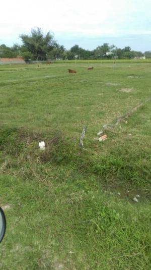 Đất thổ 2 mặt tiền đường cầy tơ kcn tân đức – hải sơn