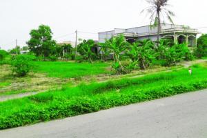 Đất xây biệt thự vườn Quy Đức Bình Chánh chỉ 1,8 tr/m2