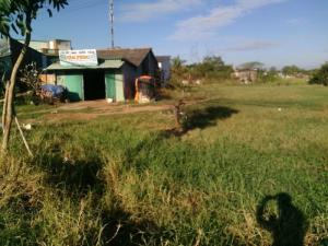 Đất nền mặt tiền QL50 diện tích 2170m2 ấp Kế Mỹ xã Trường Bình h. Cần Giuộc t. Long An