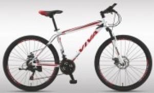 Xe đạp thể thao RAIDER 1.0