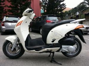 @ 150 Hàn Quốc Chính Hãng Fusin Giống Honda @...