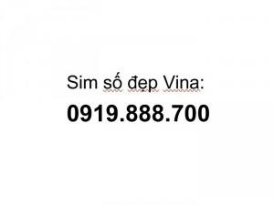 Sim số đẹp 0919.888.700