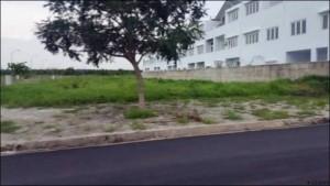 Khu nhà biệt thự bên trong dự án