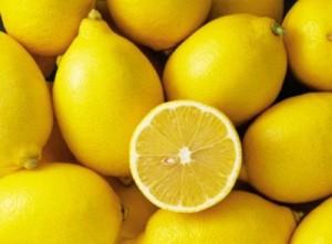 Chuyên cung cấp giống chanh eureka, chanh mỹ, chanh thái, chanh vàng, chanh, cây chanh
