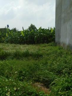 Bán đất tại Hà Huy Giáp giá 1.62 tỷ SHR