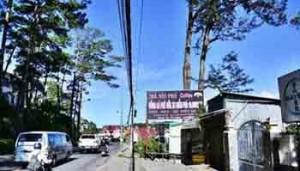 Kinh doanh cùng nhà đất trung tâm P4 Đà Lạt - Bất Động Sản Liên Minh
