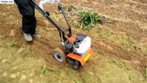 Nhà phân phối máy xạc cỏ cầm tay chính hãng Honda giá rẻ nhất thị trường