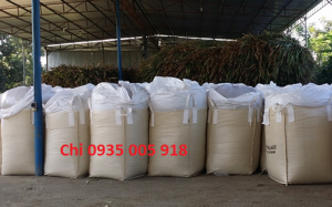 Bán bắp cây - bắp ủ chua - chất lượng, giá tốt