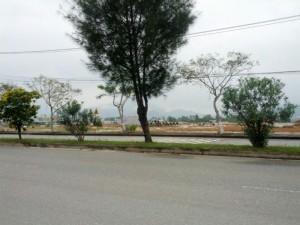Bán nhanh mấy lô đất nền đẹp, mặt tiền đường 15m gần Hồ bàu Tràm giá hấp dẫn