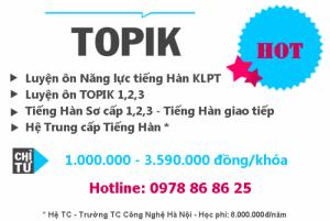 Luyện ÔN TOPIK I, II; Tiếng Hàn Xuất khẩu LĐ,...
