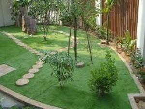 Cỏ Sân Vườn Thanh Lý