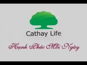 Bảo hiểm nhân thọ Cathay Việt Nam, bảo vệ các hiểm nghèo Cathay Việt Nam,