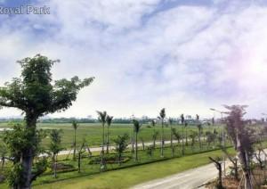 Giá cực hot với dự án RoYal Pakr huế chỉ có 9. 8tr/m2 đất nền diện tích: 112m2