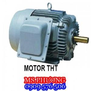 TPHCM-Cung cấp motor điện 1 pha, 3 pha các loại chính hãng giá rẻ