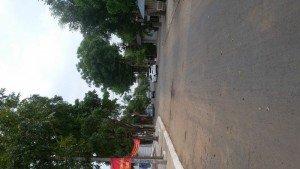 Tâm điểm thị trường BDS Tân Phú những ngày qua : đất MT Nguyễn Hữu Dật , vị trí đẹp , giá tốt
