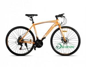 Xe đạp Fornix BT301 mẫu cải tiến của Fury...