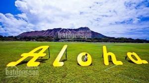 Condotel Aloha Bình Thuận, Gía 800Tr, Cam kết LN 80 Tr/Năm, Tặng 20 ngày DL.