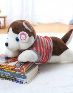 Chó bông Alaska mặc áo thun kẻ sọc