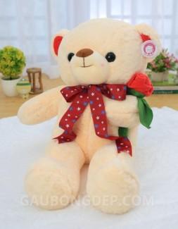 Gấu bông Teddy màu kem cầm hoa hồng
