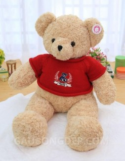 Gấu bông Teddy lông xoắn màu cà phê sữa mặc áo len đỏ