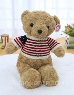 Gấu Teddy cao cấp áo len cờ Mỹ