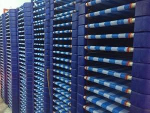 Giường lưới bọc nhựa sọc xanh dương dành cho trường mầm non